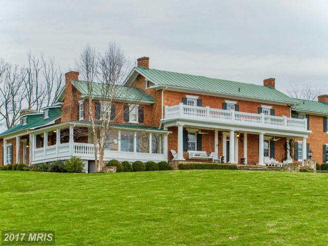1787 Light Horse Lane, Delaplane, VA 20144 (#FQ9911538) :: Pearson Smith Realty