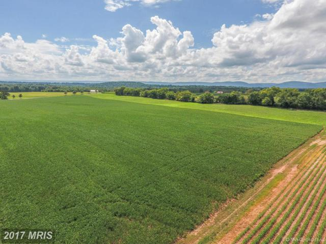 14767 Sixes Bridge Road, Emmitsburg, MD 21727 (#FR9747703) :: Pearson Smith Realty
