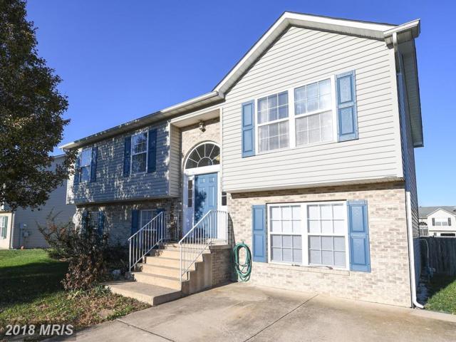 111 Rawlings Avenue, Winchester, VA 22603 (#FV10111981) :: Pearson Smith Realty