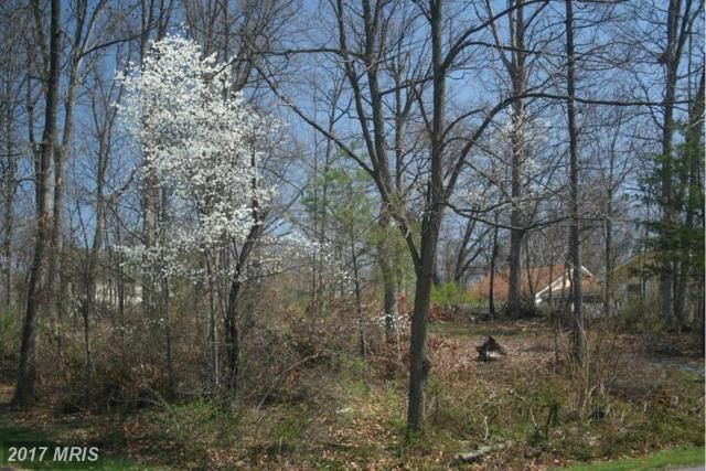1-LOT Mill Race Drive, Winchester, VA 22602 (#FV8603025) :: Pearson Smith Realty