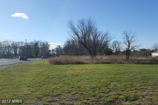 Warrior Drive, Stephens City, VA 22655 (#FV9530150) :: LoCoMusings