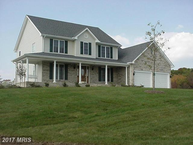 224-- 5 Mill Race Drive, Winchester, VA 22602 (#FV9711420) :: Keller Williams Pat Hiban Real Estate Group