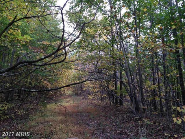 0 Witch Hazel Trail, Winchester, VA 22602 (#FV9726694) :: LoCoMusings
