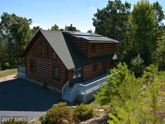 400 Great Mountain Lane, Winchester, VA 22602 (#FV9776901) :: Pearson Smith Realty