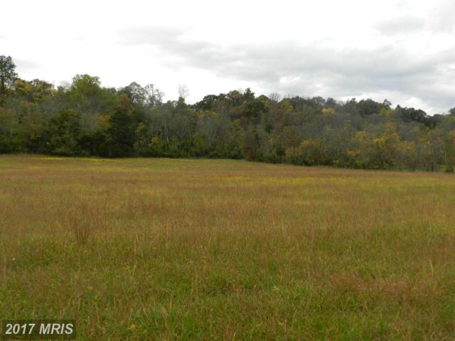 LOT 9 Back Mountain Road, Winchester, VA 22602 (#FV9792248) :: Pearson Smith Realty