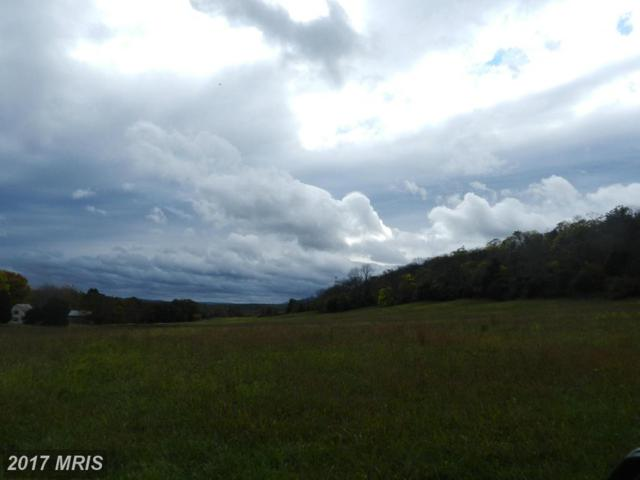 LOT 11 Back Mountain Road, Winchester, VA 22602 (#FV9793654) :: LoCoMusings