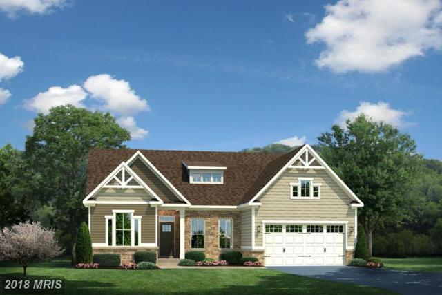 0020 Atlantis Lane, LAKE FREDERICK, VA 22630 (#FV9897364) :: Browning Homes Group