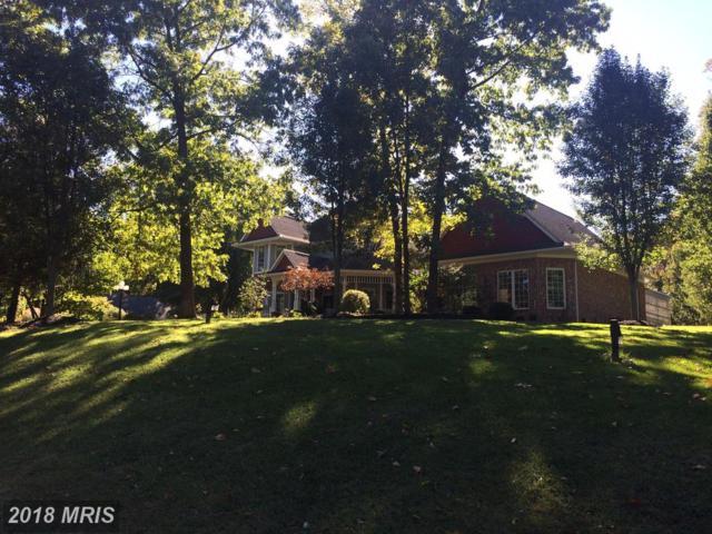 196 Mcguire Road, Winchester, VA 22603 (#FV9900739) :: Bob Lucido Team of Keller Williams Integrity