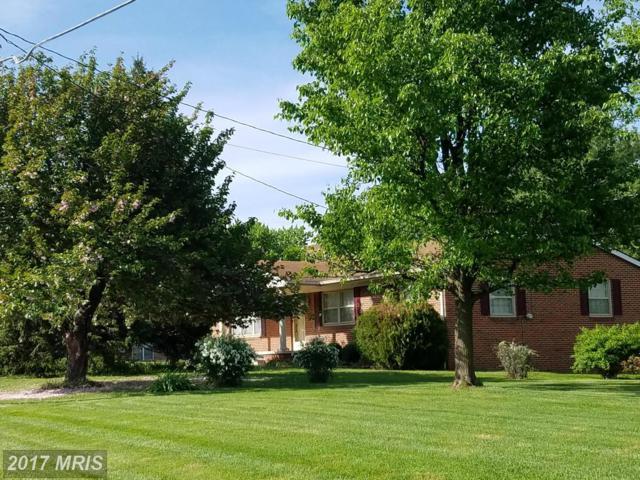 2190 First Street, Middletown, VA 22645 (#FV9912638) :: LoCoMusings