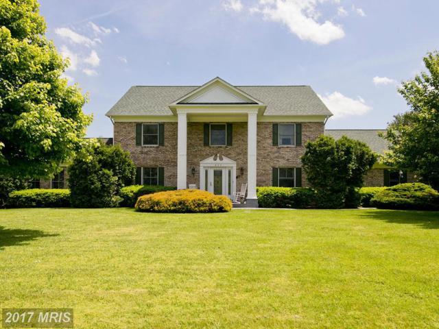 896 Old Bethel Church Road, Winchester, VA 22603 (#FV9928615) :: LoCoMusings