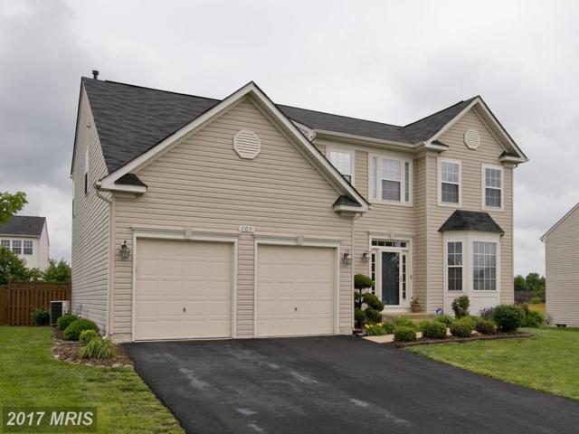 309 Cheltenham Drive, Stephens City, VA 22655 (#FV9954211) :: LoCoMusings