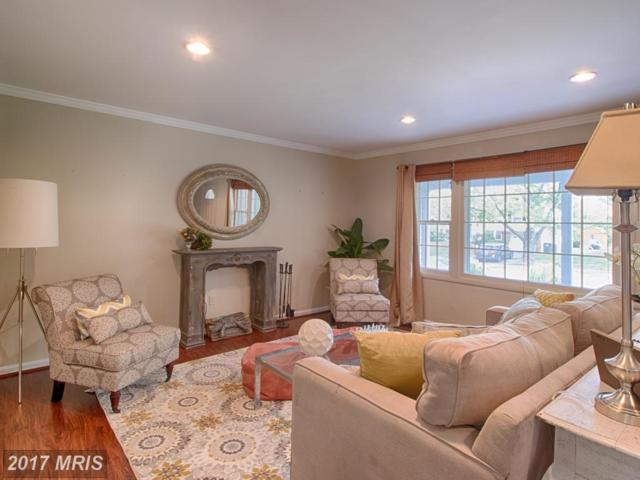 13026 Maple View Lane, Fairfax, VA 22033 (#FX10021119) :: LoCoMusings