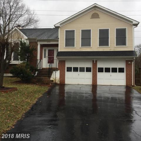 6766 Morning Ride Circle, Alexandria, VA 22315 (#FX10036172) :: Labrador Real Estate Team