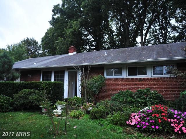 7503 Havelock Street, Springfield, VA 22150 (#FX10039152) :: Pearson Smith Realty