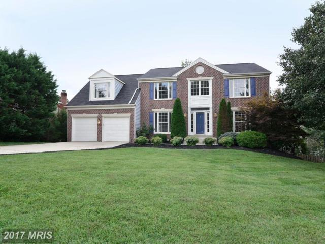14037 Compton Heights Court, Clifton, VA 20124 (#FX10041147) :: Pearson Smith Realty