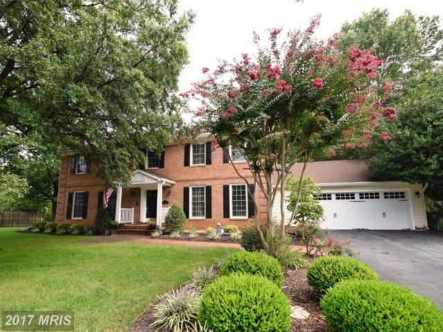3716 Riverwood Road, Alexandria, VA 22309 (#FX10047883) :: Pearson Smith Realty