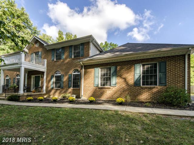 8216 Holland Road, Alexandria, VA 22306 (#FX10068701) :: Pearson Smith Realty