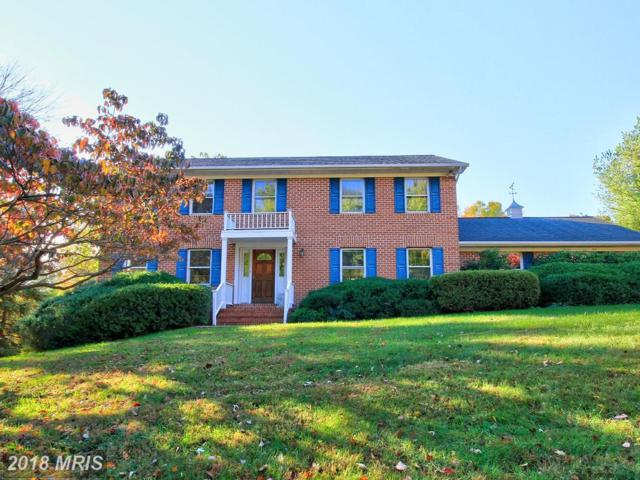 10913 Belgravia Court, Great Falls, VA 22066 (#FX10129704) :: Great Falls Great Homes