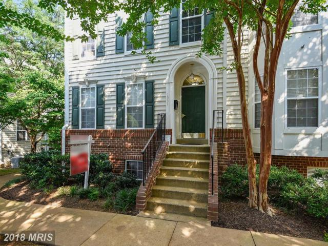 1531 Northern Neck Drive #1, Vienna, VA 22182 (#FX10289988) :: RE/MAX Executives
