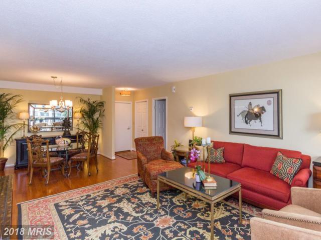 5505 Seminary Road 603N, Falls Church, VA 22041 (#FX10297520) :: Provident Real Estate