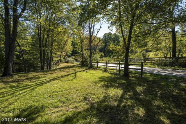 946 Walker Road, Great Falls, VA 22066 (#FX8619288) :: LoCoMusings