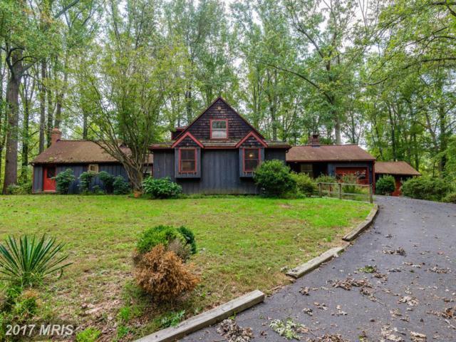 1030 Millwood Road, Great Falls, VA 22066 (#FX9802325) :: Pearson Smith Realty