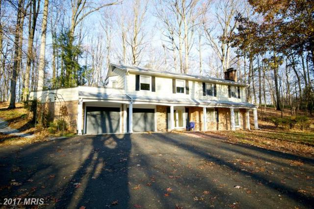 11600 Blue Ridge Lane, Great Falls, VA 22066 (#FX9830470) :: LoCoMusings
