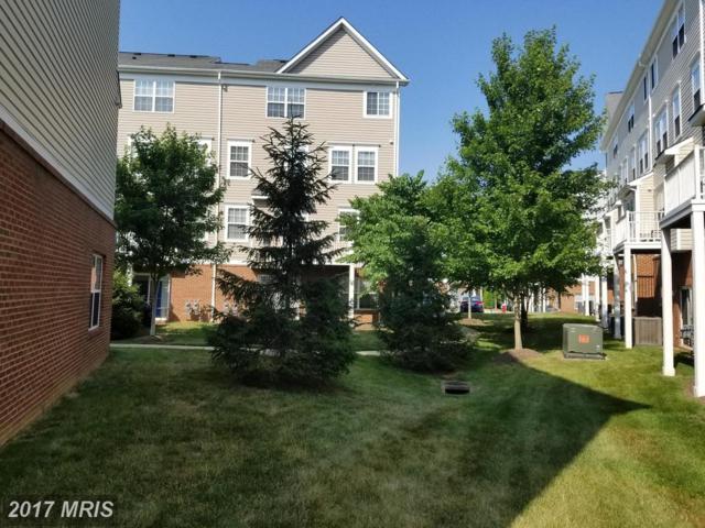 13519 Davinci Lane #65, Oak Hill, VA 20171 (#FX9900572) :: Pearson Smith Realty