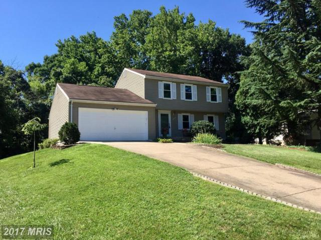 15315 Blueridge View Drive, Centreville, VA 20120 (#FX9929443) :: Pearson Smith Realty