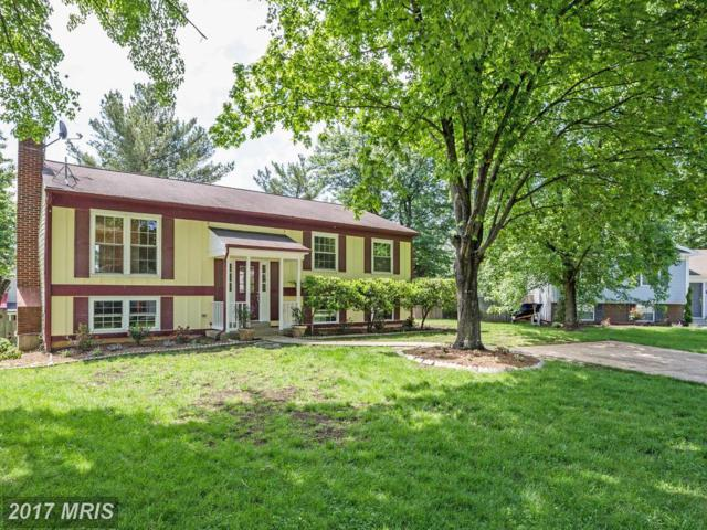 700 Fall Place, Herndon, VA 20170 (#FX9958535) :: Pearson Smith Realty