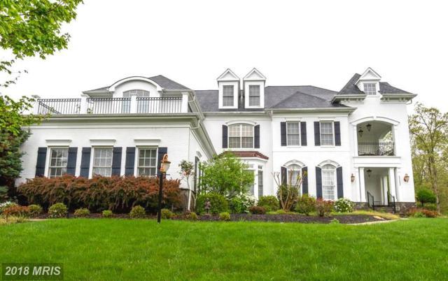 5212 Rosalie Ridge Drive, Centreville, VA 20120 (#FX9973350) :: Pearson Smith Realty