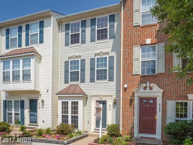 8356 Hunter Murphy Circle, Alexandria, VA 22309 (#FX9975696) :: LoCoMusings