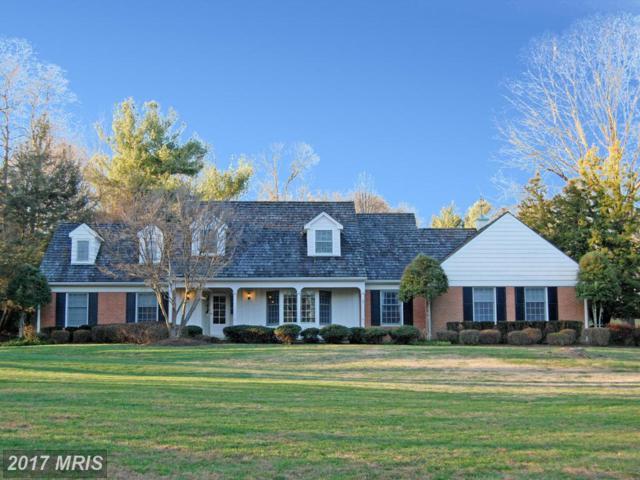 9314 Arnon Chapel Road, Great Falls, VA 22066 (#FX9988406) :: LoCoMusings