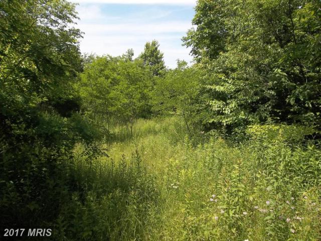 Windswept Lane Lot 8 Road, Grantsville, MD 21536 (#GA9648688) :: Pearson Smith Realty