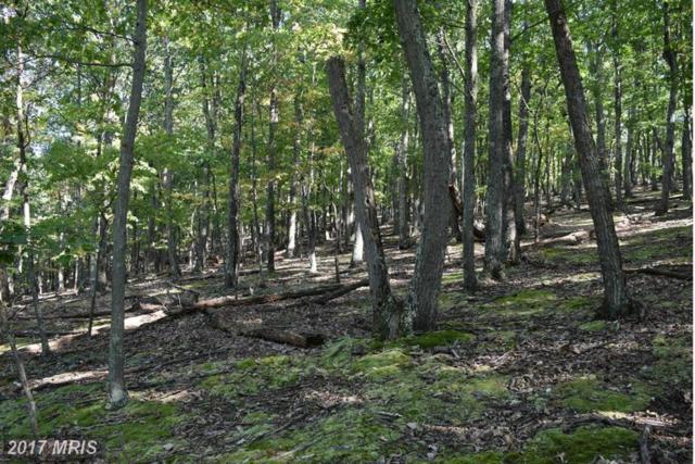 Woodpecker Lane, Maysville, WV 26833 (#GT9758826) :: LoCoMusings