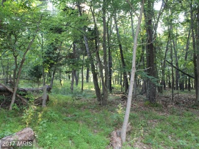 Anderson Ridge Rd, Wardensville, WV 26851 (#HD9540289) :: Pearson Smith Realty
