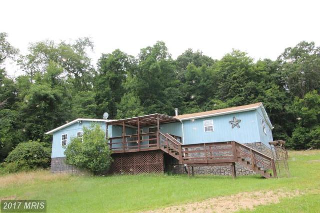 715 Honeymoon Hollow Rd., Lost City, WV 26810 (#HD9737123) :: LoCoMusings