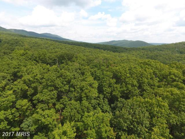 52 Trout Pass, Lost River, WV 26810 (#HD9737514) :: Pearson Smith Realty