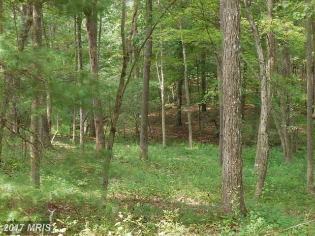 Trout Stream Road, Lost River, WV 26810 (#HD9739378) :: Pearson Smith Realty