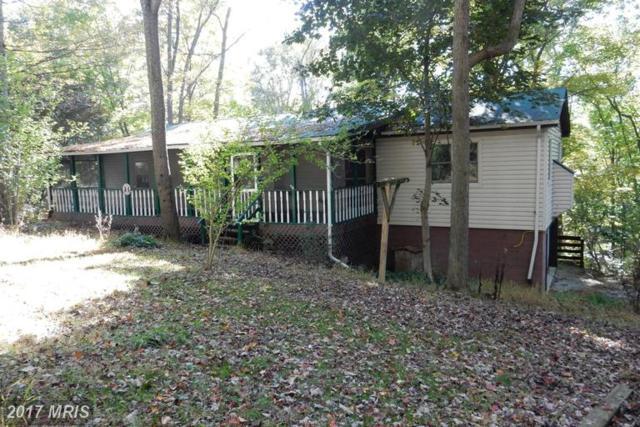 40 Oak Ridge, Lost River, WV 26810 (#HD9794046) :: LoCoMusings
