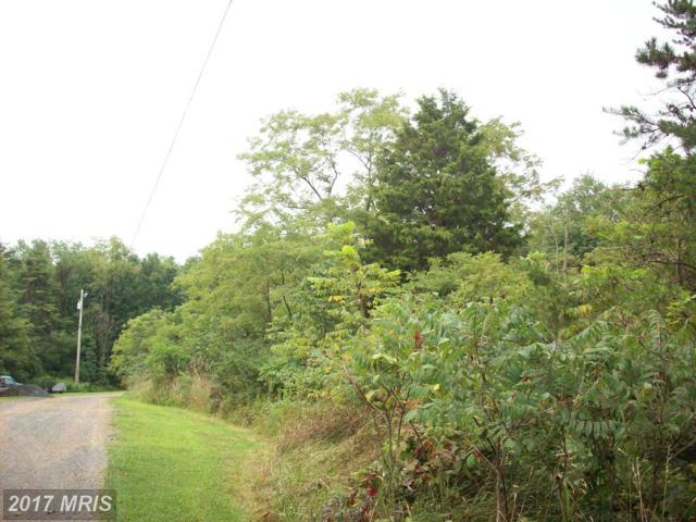 Steelhorse Trail, Romney, WV 26757 (#HS9585613) :: Pearson Smith Realty