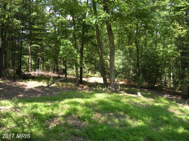 LOT #101 Mossy Oaks Road, Yellow Spring, WV 26865 (#HS9751539) :: Pearson Smith Realty