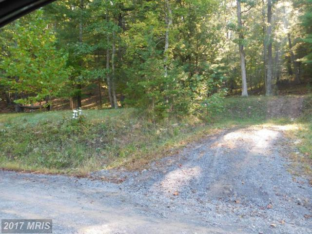 Lot 8 North River Rd, Augusta, WV 26704 (#HS9781047) :: Pearson Smith Realty