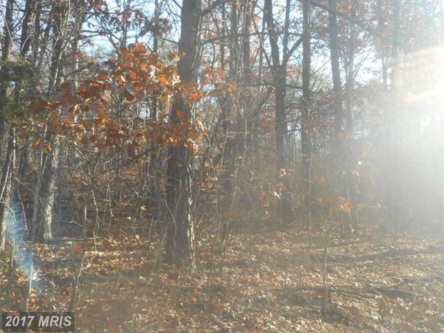 Stag Trail, Springfield, WV 26763 (#HS9799372) :: LoCoMusings