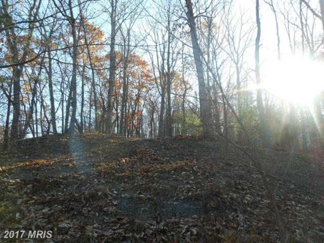Stag Trail, Springfield, WV 26763 (#HS9799377) :: LoCoMusings