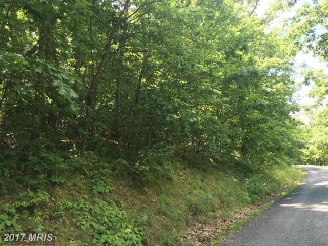 LOT #45 Timberlake Drive, James Creek, PA 16657 (#HU9706594) :: Pearson Smith Realty