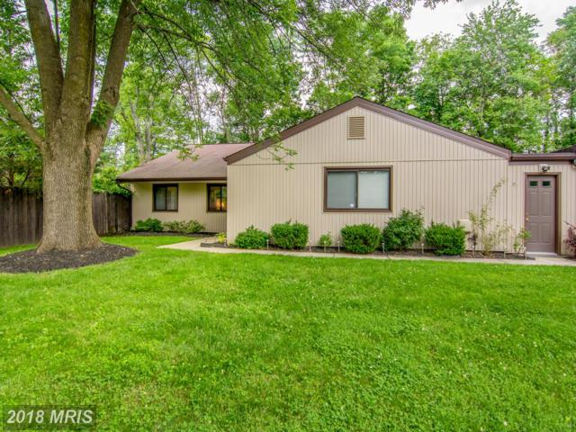 5420 Storm Drift, Columbia, MD 21045 (#HW10246064) :: Provident Real Estate