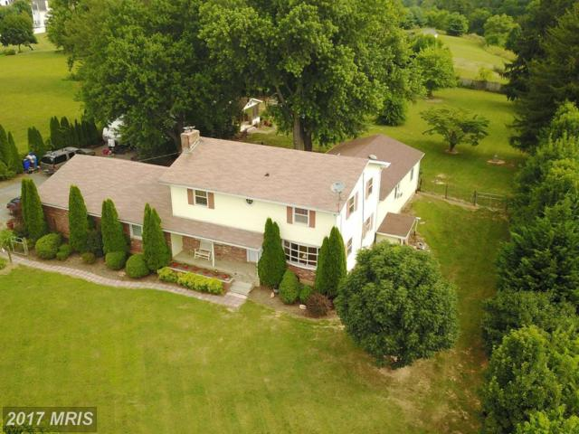 17226 Hardy Road, Mount Airy, MD 21771 (#HW9963548) :: Pearson Smith Realty