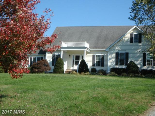 8950 Orchard Drive, Chestertown, MD 21620 (#KE9791278) :: Pearson Smith Realty