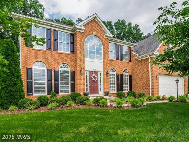 11565 Hopyard Drive, King George, VA 22485 (MLS #KG10053591) :: Explore Realty Group